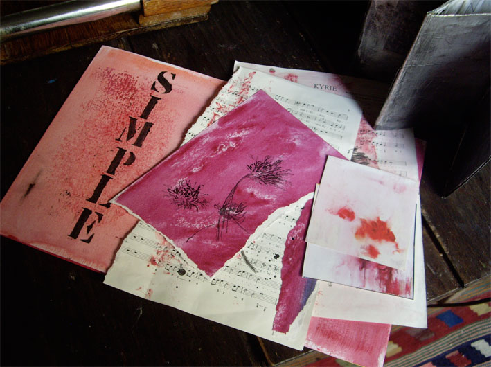 study-in-pink