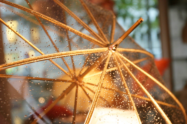Gold-rim-umbrella